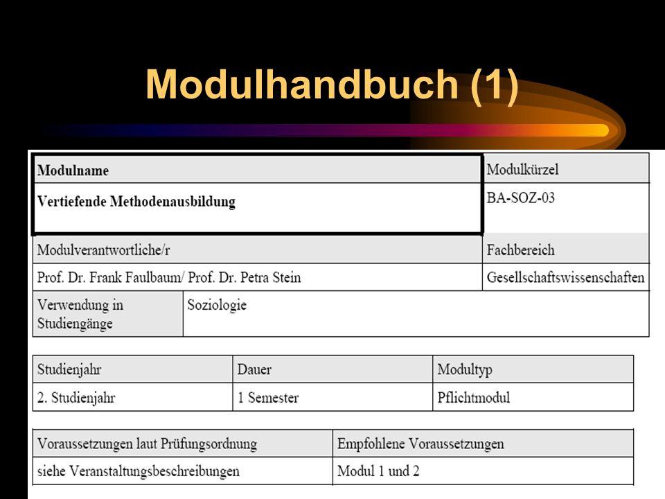 Modulhandbuch (1)