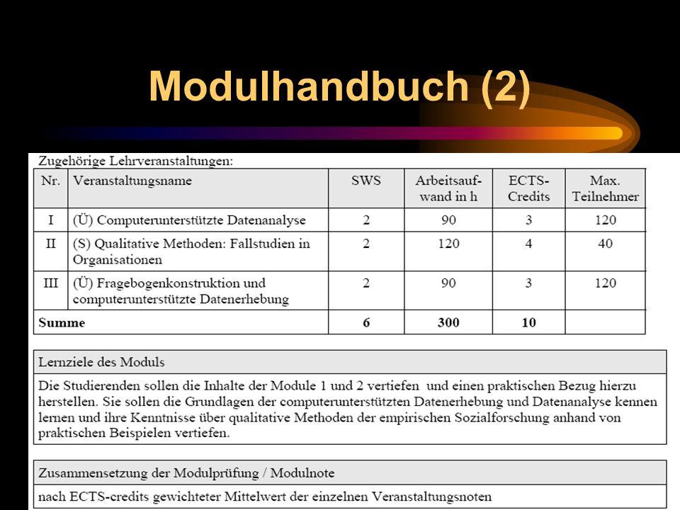 Modulhandbuch (2)