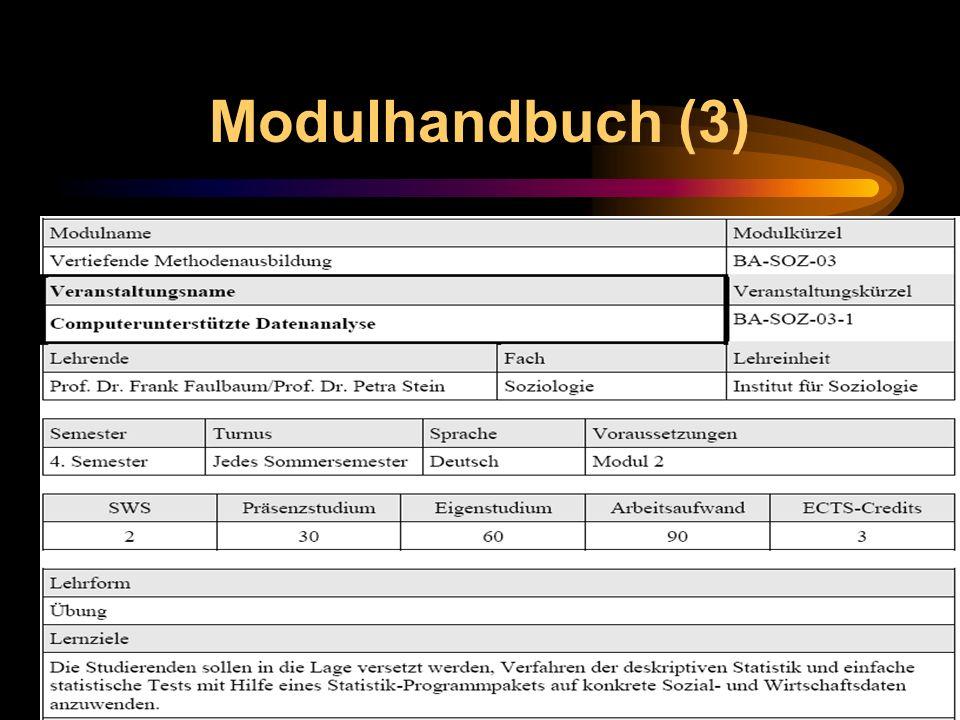 Modulhandbuch (3)
