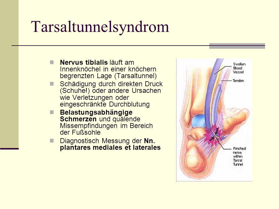 Tarsaltunnelsyndrom Nervus tibialis läuft am Innenknöchel in einer knöchern begrenzten Lage (Tarsaltunnel) Schädigung durch direkten Druck (Schuhe!) o