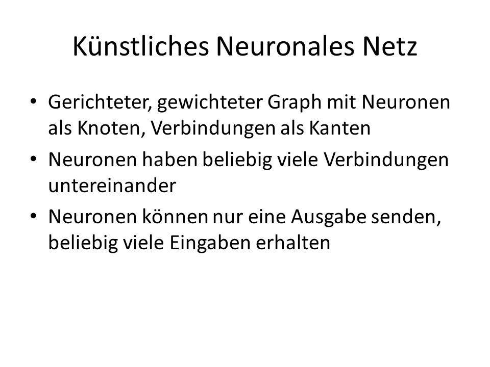 Künstliches Neuronales Netz Gerichteter, gewichteter Graph mit Neuronen als Knoten, Verbindungen als Kanten Neuronen haben beliebig viele Verbindungen