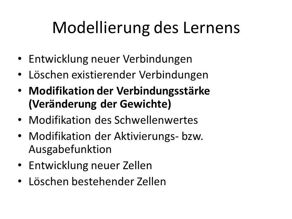 Modellierung des Lernens Entwicklung neuer Verbindungen Löschen existierender Verbindungen Modifikation der Verbindungsstärke (Veränderung der Gewicht