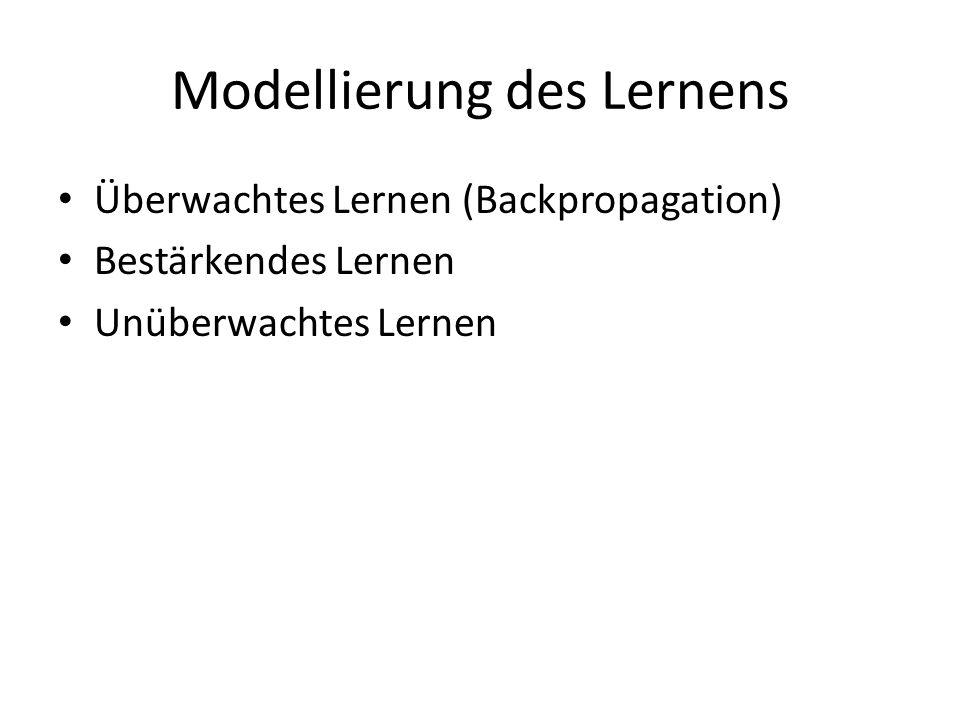 Modellierung des Lernens Überwachtes Lernen (Backpropagation) Bestärkendes Lernen Unüberwachtes Lernen