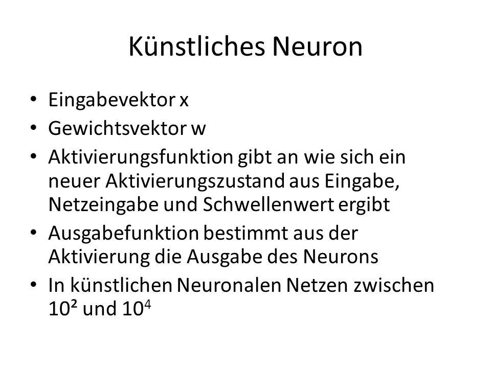 Künstliches Neuron Eingabevektor x Gewichtsvektor w Aktivierungsfunktion gibt an wie sich ein neuer Aktivierungszustand aus Eingabe, Netzeingabe und S