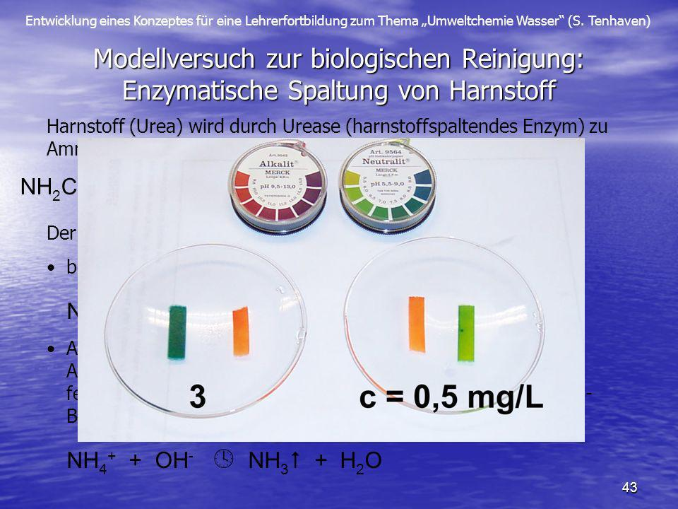 Entwicklung eines Konzeptes für eine Lehrerfortbildung zum Thema Umweltchemie Wasser (S. Tenhaven) 43 Modellversuch zur biologischen Reinigung: Enzyma