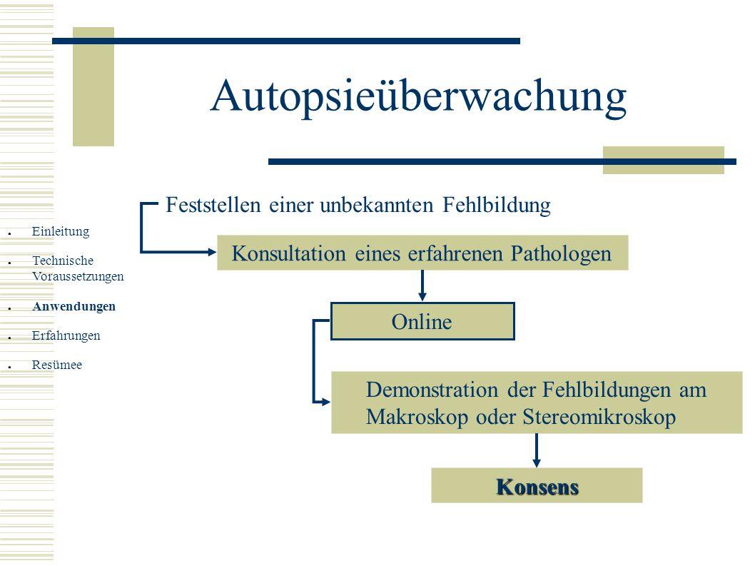 Autopsieüberwachung Feststellen einer unbekannten Fehlbildung Konsultation eines erfahrenen Pathologen Online Demonstration der Fehlbildungen am Makro