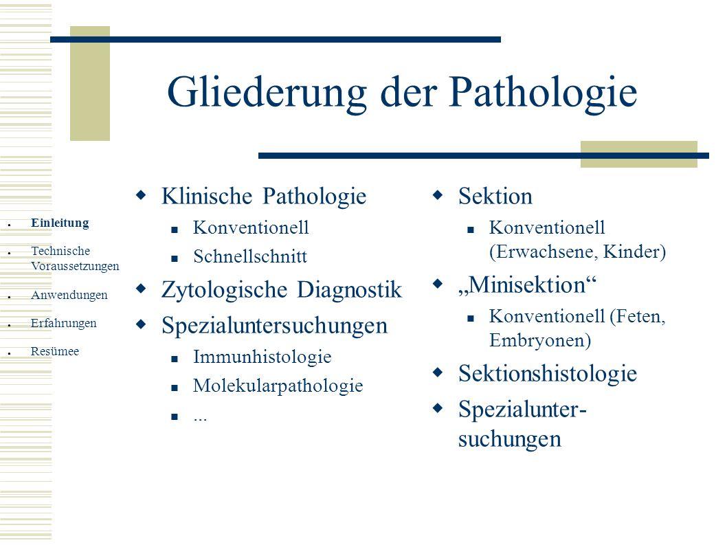 Gliederung der Pathologie Klinische Pathologie Konventionell Schnellschnitt Zytologische Diagnostik Spezialuntersuchungen Immunhistologie Molekularpat