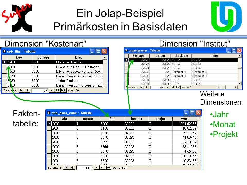 Ein Jolap-Beispiel Primärkosten in Basisdaten Dimension