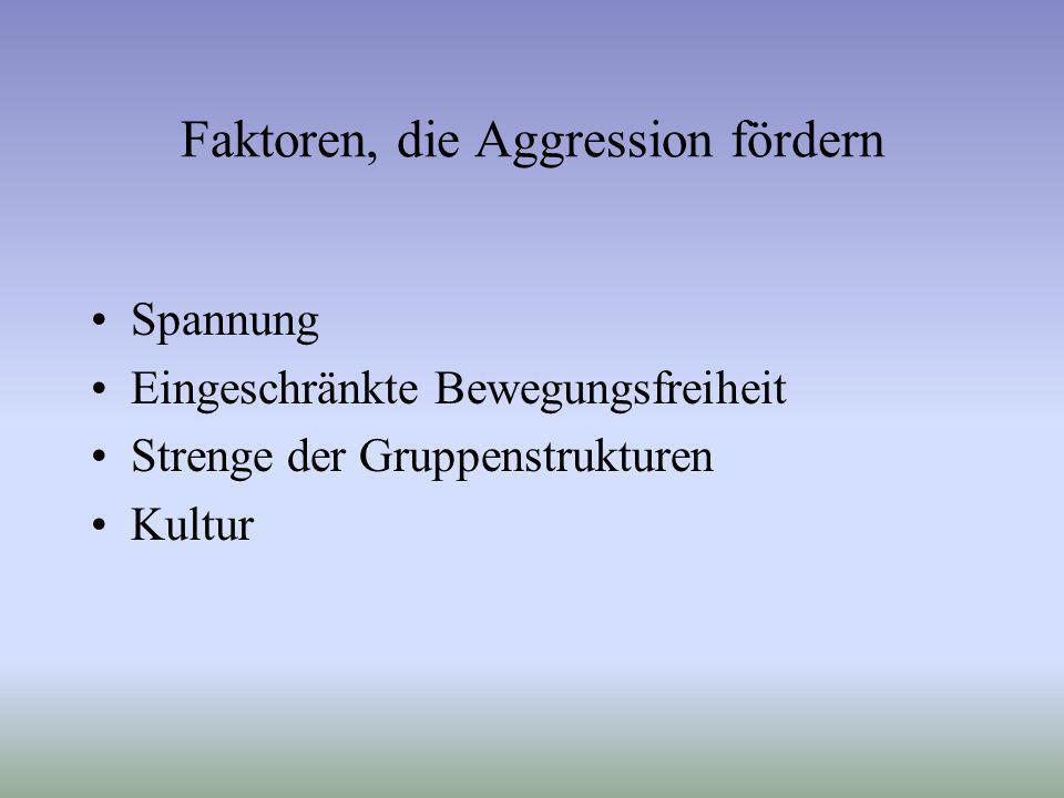 Faktoren, die Aggression fördern Spannung Eingeschränkte Bewegungsfreiheit Strenge der Gruppenstrukturen Kultur