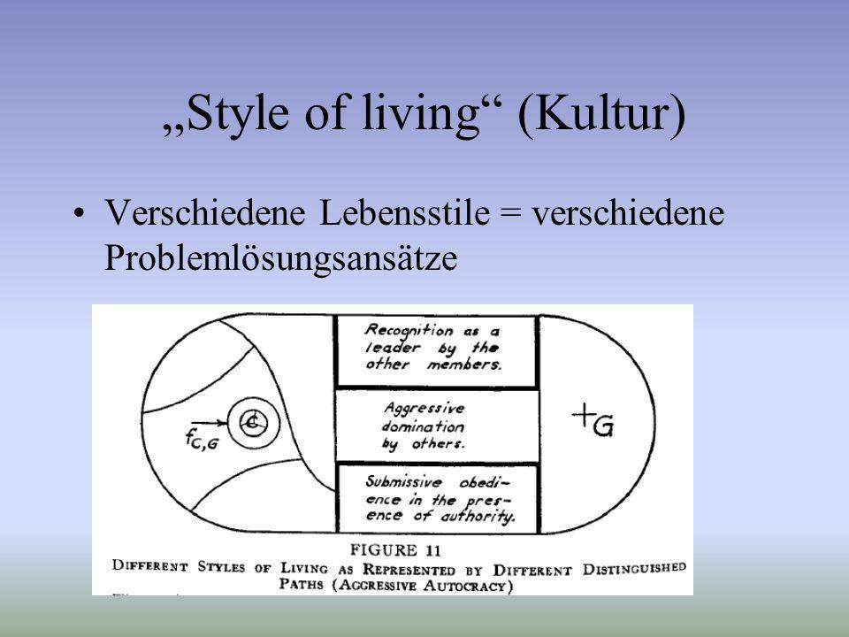 Style of living (Kultur) Verschiedene Lebensstile = verschiedene Problemlösungsansätze
