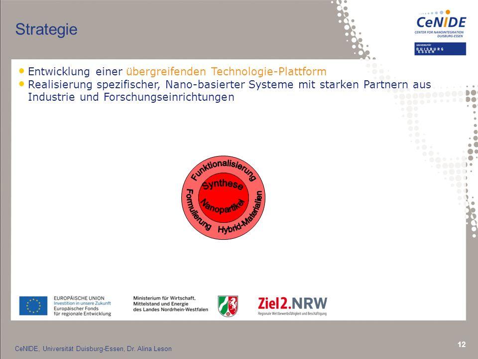 12 Strategie Entwicklung einer übergreifenden Technologie-Plattform Realisierung spezifischer, Nano-basierter Systeme mit starken Partnern aus Industrie und Forschungseinrichtungen CeNIDE, Universität Duisburg-Essen, Dr.