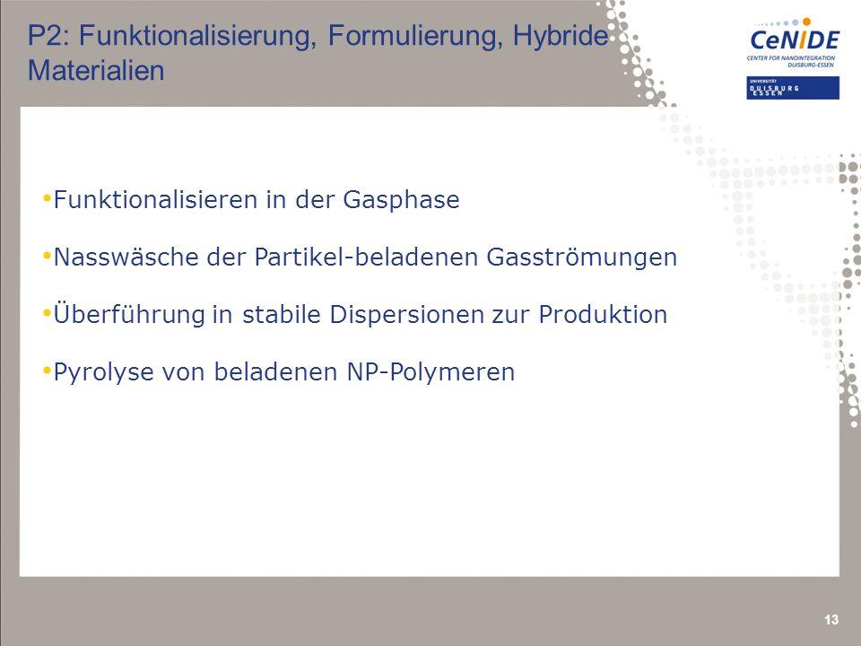 13 P2: Funktionalisierung, Formulierung, Hybride Materialien Funktionalisieren in der Gasphase Nasswäsche der Partikel-beladenen Gasströmungen Überführung in stabile Dispersionen zur Produktion Pyrolyse von beladenen NP-Polymeren