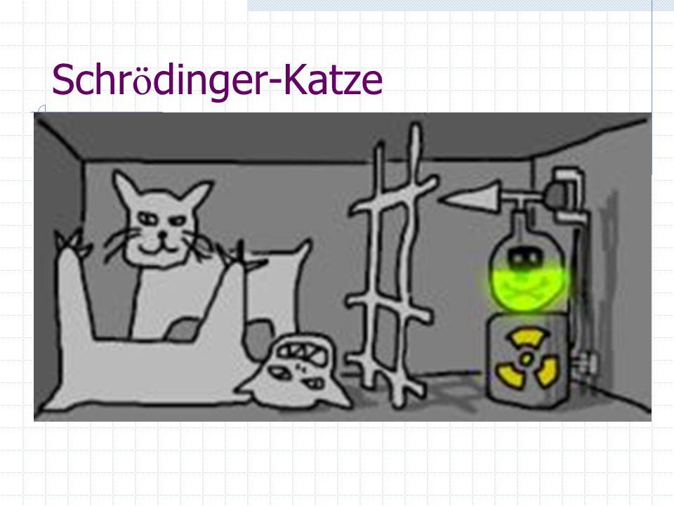Schr ö dinger-Katze