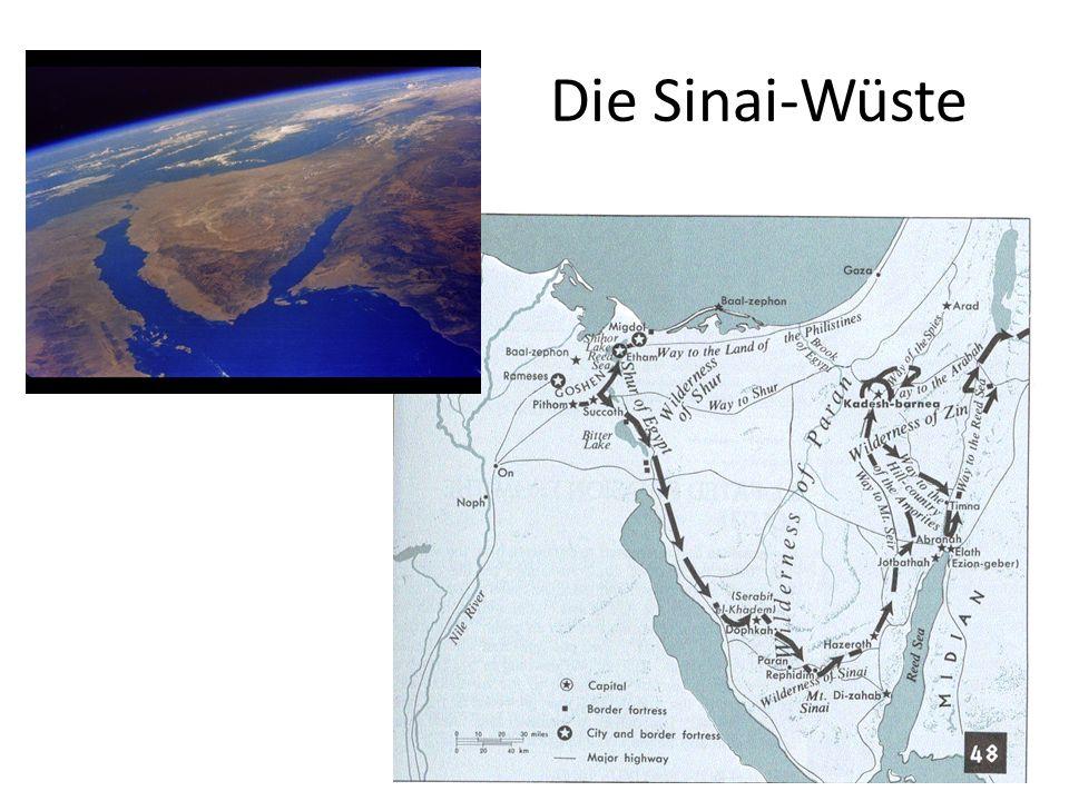 Eindruck von der Sinai-Wüste