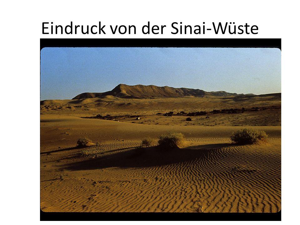 Abschnitte der Wüstenwanderung Ex 15,22-18,27: Vom Meer zum Sinai Ex 19,1-Num 10,28: Aufenthalt am Sinai Num 10,29-20,21: Vom Sinai nach Kadesch Num 20,22-21,20: von Kadesch nach Moab Num 21,21-Dtn 34,12: von Moab bis zum Berg Nebo