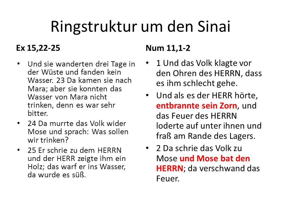 Mk 9: Mose im Land 2 Und nach sechs Tagen nahm Jesus mit sich Petrus, Jakobus und Johannes und führte sie auf einen hohen Berg, nur sie allein.