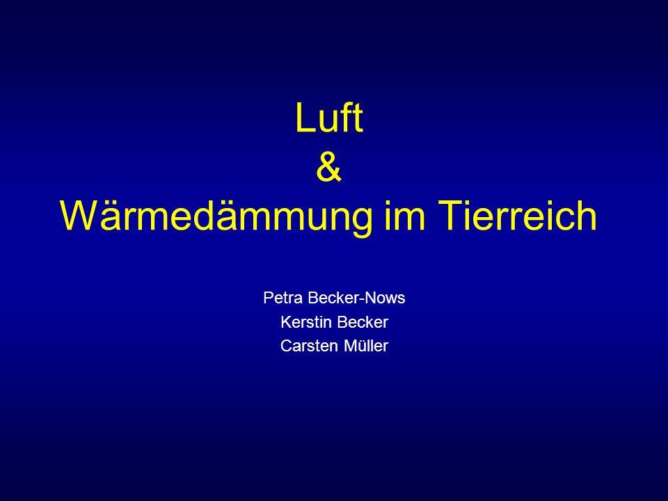 Luft & Wärmedämmung im Tierreich Petra Becker-Nows Kerstin Becker Carsten Müller