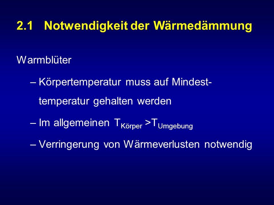 2.1 Notwendigkeit der Wärmedämmung Warmblüter –Körpertemperatur muss auf Mindest- temperatur gehalten werden –Im allgemeinen T Körper >T Umgebung –Verringerung von Wärmeverlusten notwendig