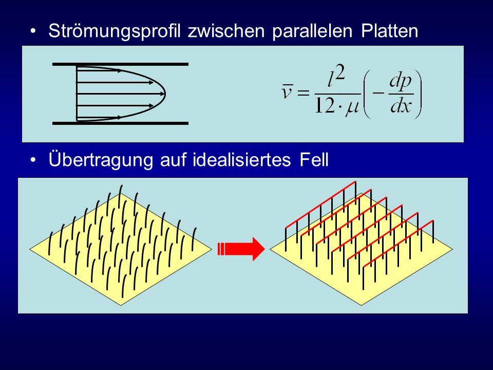 Strömungsprofil zwischen parallelen Platten Übertragung auf idealisiertes Fell