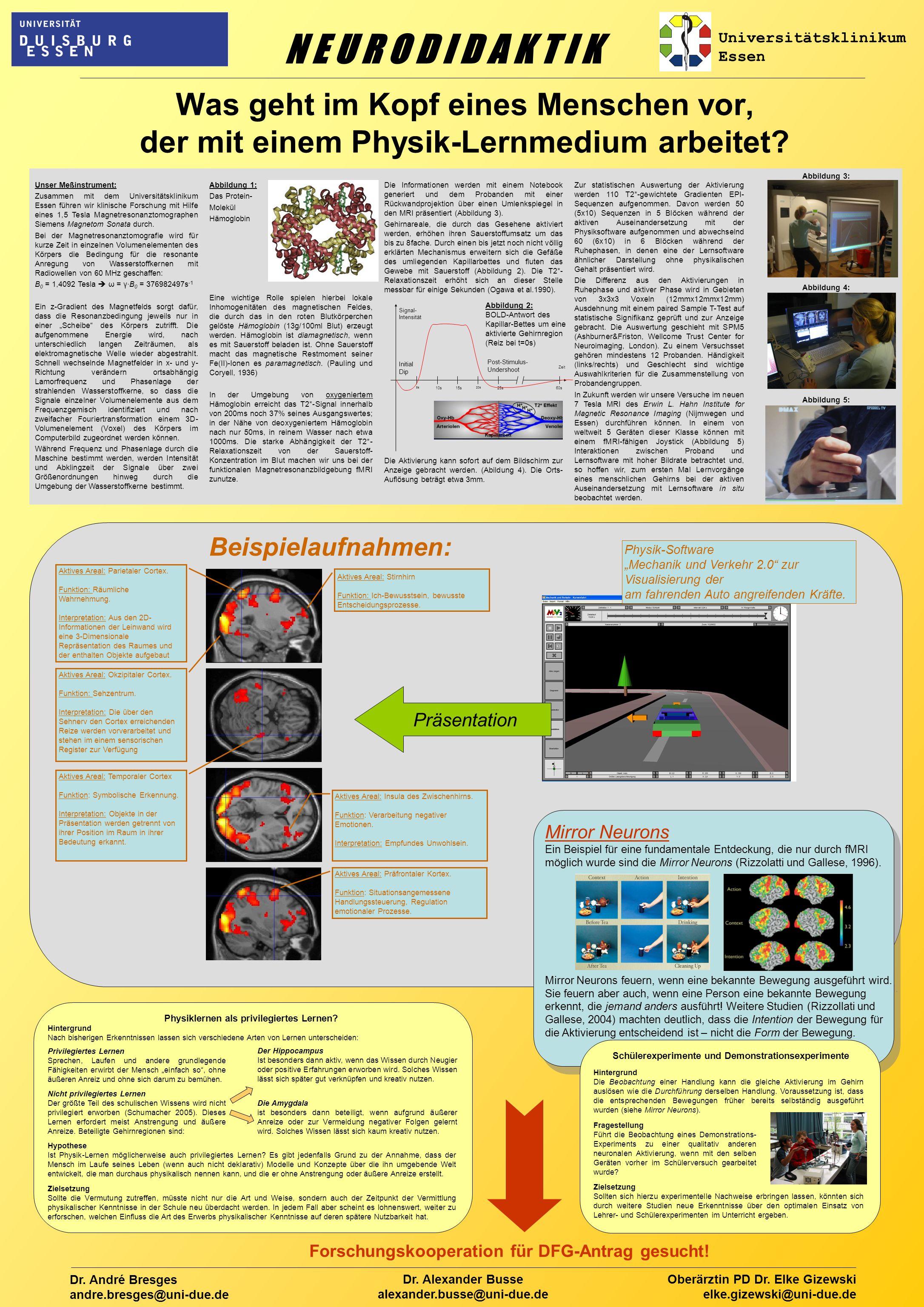 Was geht im Kopf eines Menschen vor, der mit einem Physik-Lernmedium arbeitet.