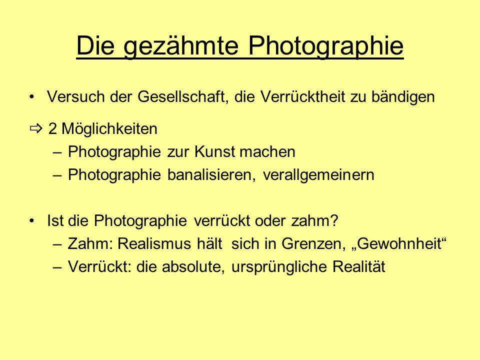 Die gezähmte Photographie Versuch der Gesellschaft, die Verrücktheit zu bändigen 2 Möglichkeiten –Photographie zur Kunst machen –Photographie banalisi