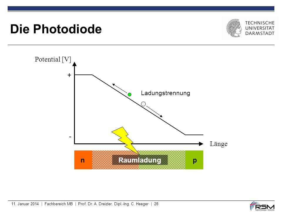 11. Januar 2014 | Fachbereich MB | Prof. Dr. A. Dreizler, Dipl.-Ing. C. Heeger | 28 Die Photodiode - Raumladung np + Potential [V] Länge Ladungstrennu