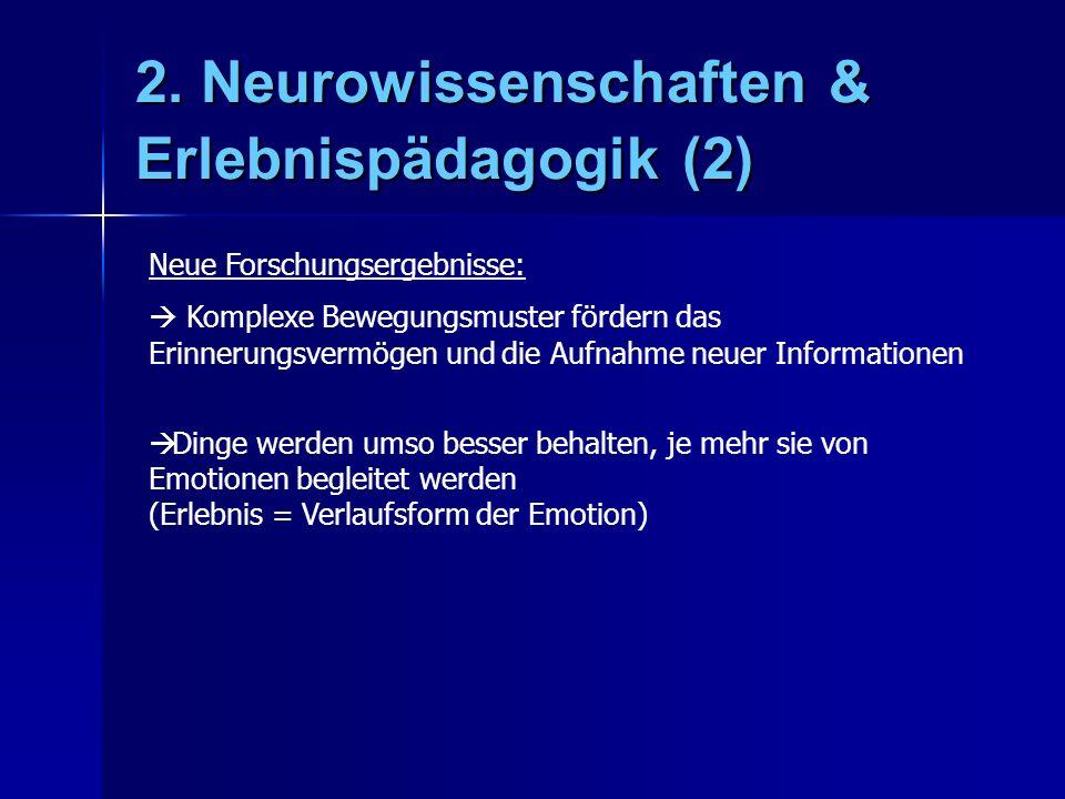 2. Neurowissenschaften & Erlebnispädagogik (2) Neue Forschungsergebnisse: Komplexe Bewegungsmuster fördern das Erinnerungsvermögen und die Aufnahme ne