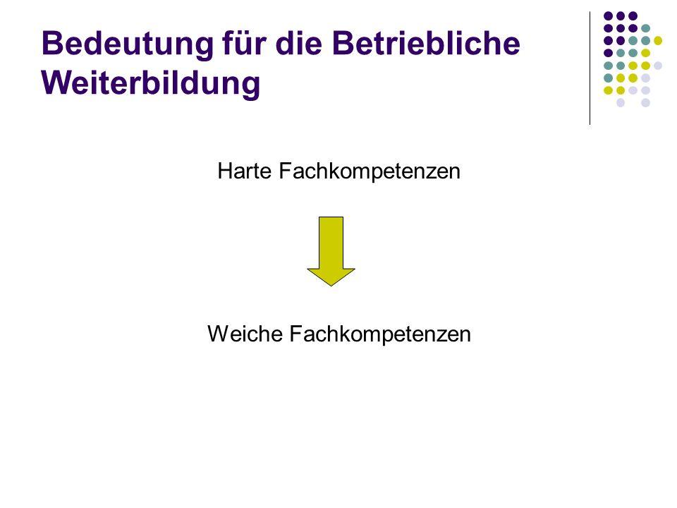 Strategien und Methoden der BW Systemkompetenz fördern und entwickeln Fachkompetenz Methodenkompetenz Systemkompetenz Sozialkompetenz Selbstkompetenz