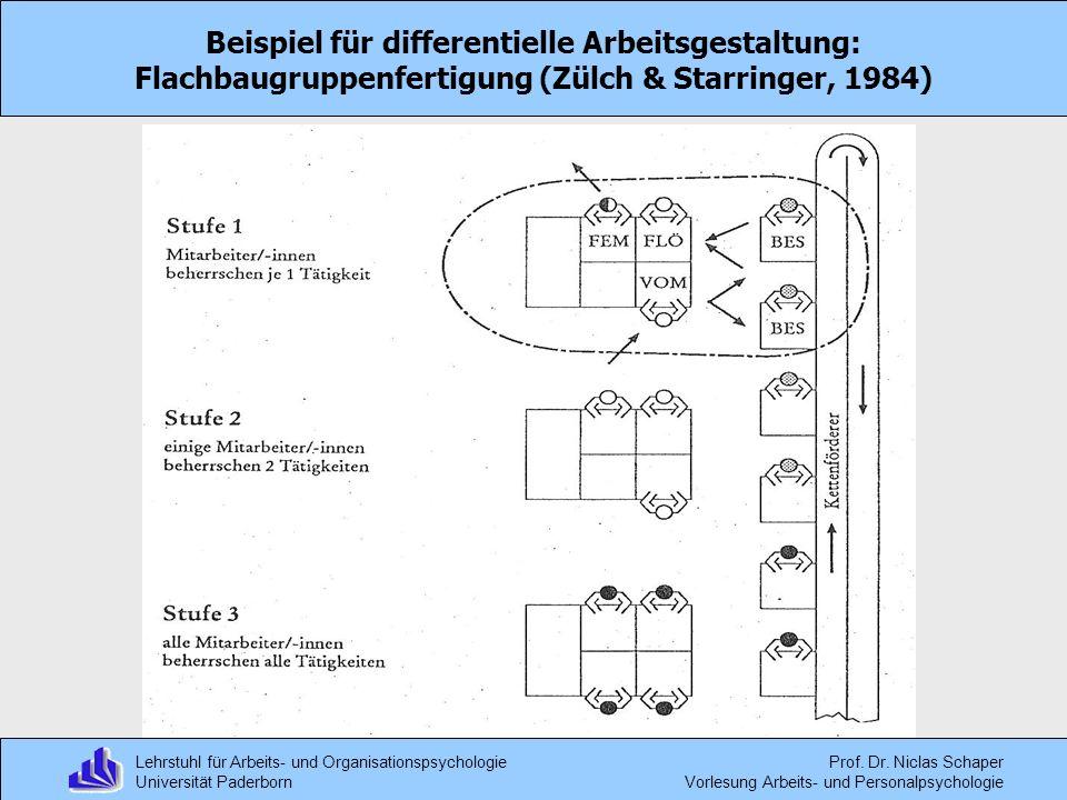 Lehrstuhl für Arbeits- und Organisationspsychologie Universität Paderborn Prof. Dr. Niclas Schaper Vorlesung Arbeits- und Personalpsychologie Beispiel