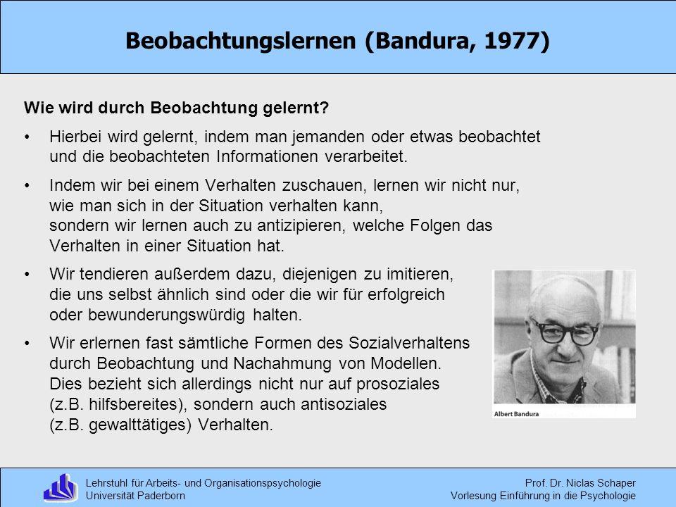 Lehrstuhl für Arbeits- und Organisationspsychologie Universität Paderborn Prof. Dr. Niclas Schaper Vorlesung Einführung in die Psychologie Beobachtung