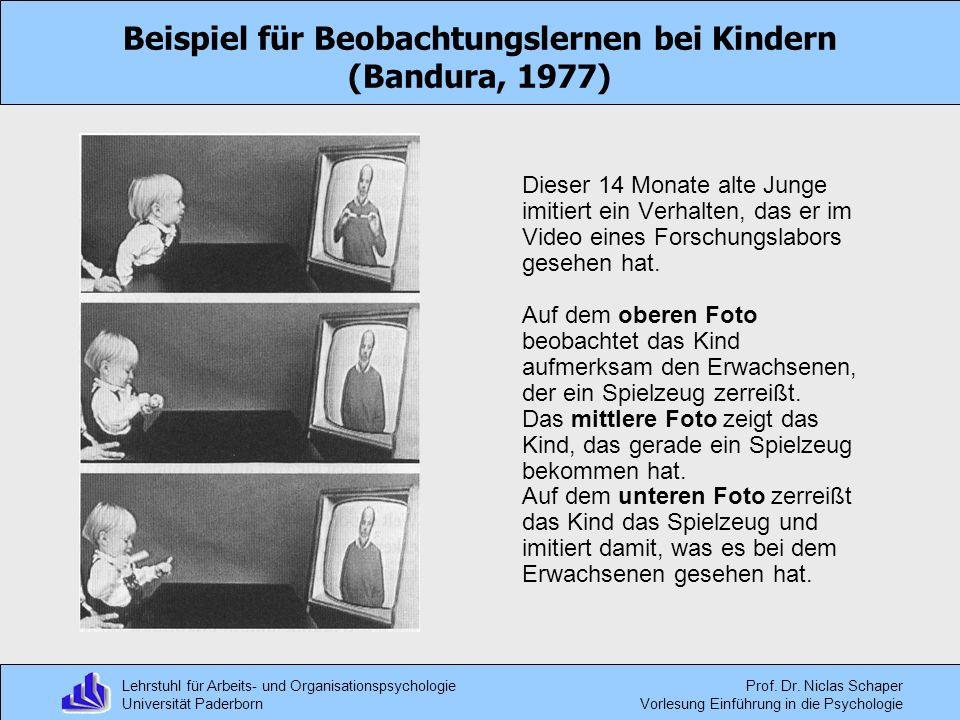 Lehrstuhl für Arbeits- und Organisationspsychologie Universität Paderborn Prof. Dr. Niclas Schaper Vorlesung Einführung in die Psychologie Beispiel fü