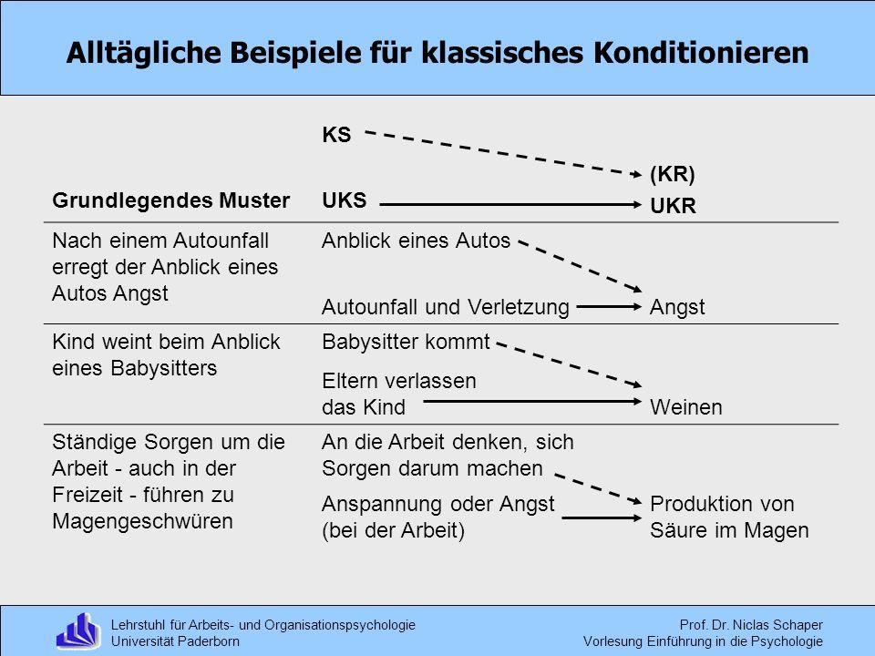 Lehrstuhl für Arbeits- und Organisationspsychologie Universität Paderborn Prof. Dr. Niclas Schaper Vorlesung Einführung in die Psychologie Alltägliche