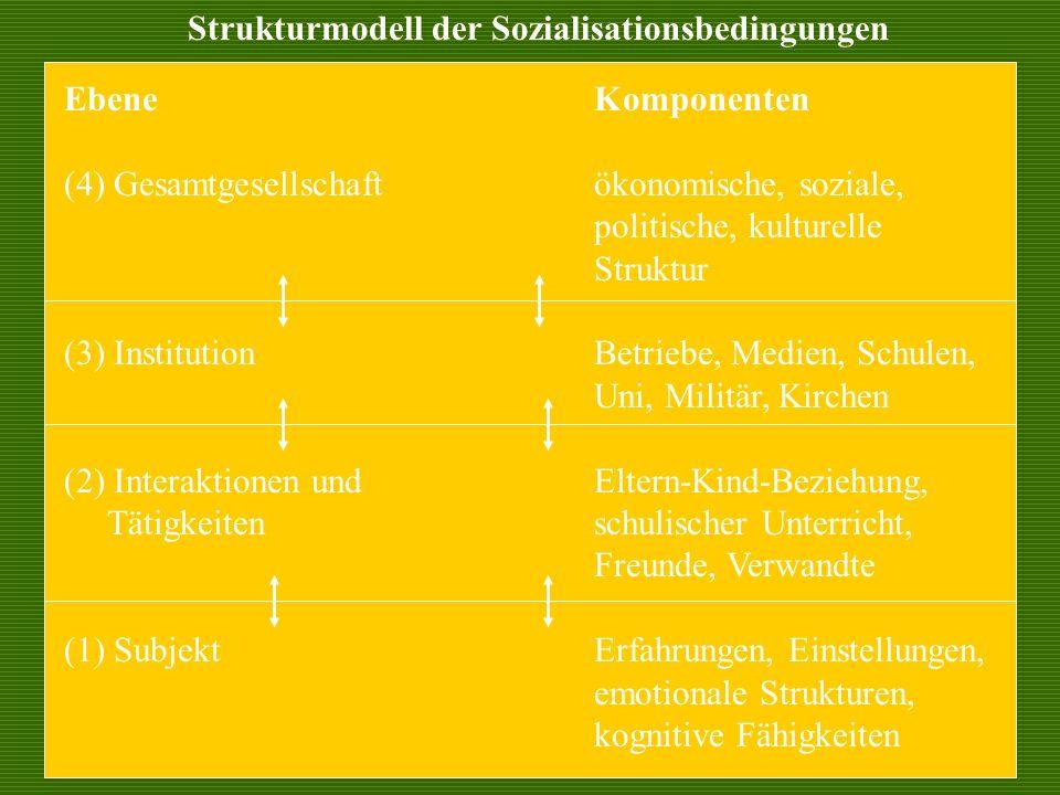 EbeneKomponenten (4) Gesamtgesellschaftökonomische, soziale, politische, kulturelle Struktur (3) InstitutionBetriebe, Medien, Schulen, Uni, Militär, K