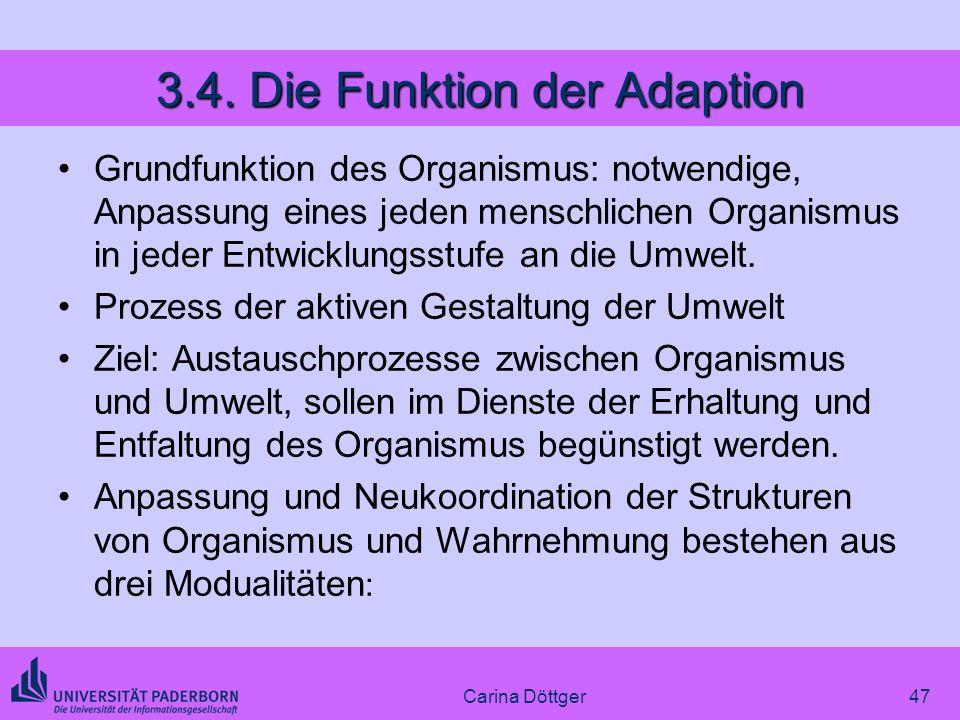 47 3.4. Die Funktion der Adaption Grundfunktion des Organismus: notwendige, Anpassung eines jeden menschlichen Organismus in jeder Entwicklungsstufe a
