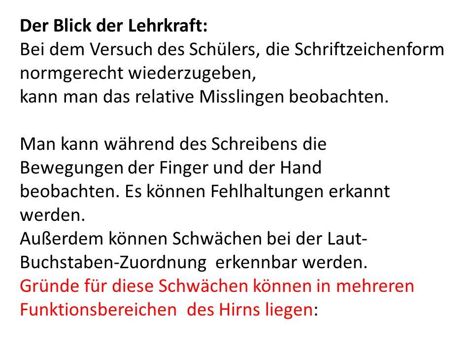 Literaturhinweise: R.Lurija: Einführung in die Neuropsychologie.