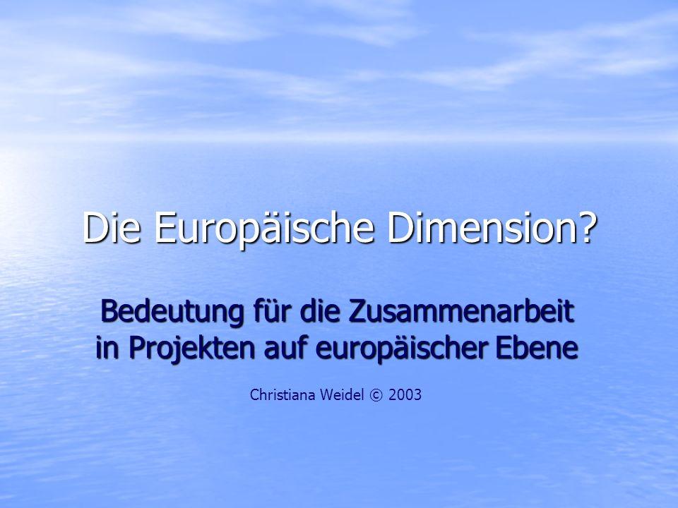 Europäische Dimension bringt … Zusammenarbeit über Grenzen hinweg – –Bei gleichen Themen, Problemen, Zielgruppen – –Auf der Lösungssuche – –Für neue Methoden, Wege und Modelle Notwendigkeit der Harmonisierung – –Zur Erleichterung der Zusammenarbeit – –Zur besseren Vergleichbarkeit – –Aber nur, wo sinnvoll.