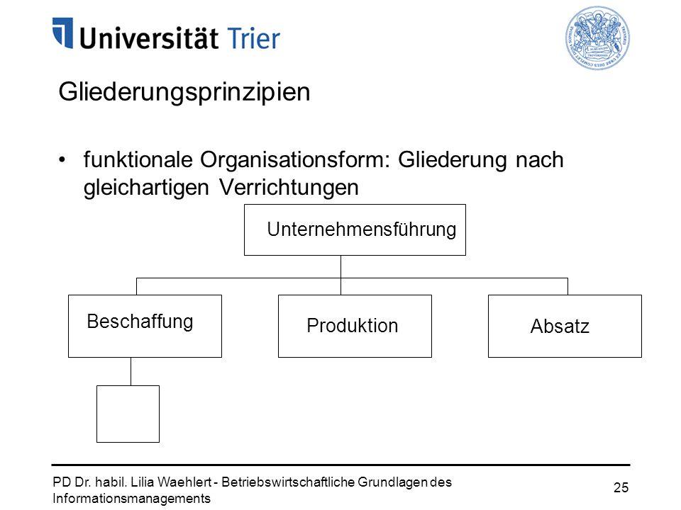 PD Dr. habil. Lilia Waehlert - Betriebswirtschaftliche Grundlagen des Informationsmanagements 25 Gliederungsprinzipien funktionale Organisationsform: