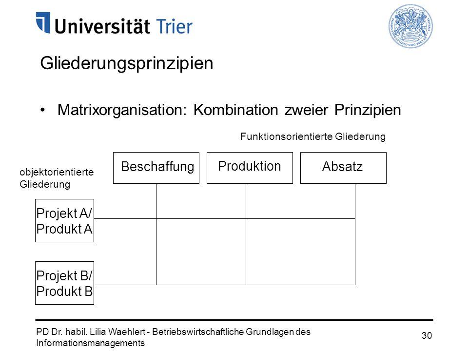PD Dr. habil. Lilia Waehlert - Betriebswirtschaftliche Grundlagen des Informationsmanagements 30 Gliederungsprinzipien Matrixorganisation: Kombination