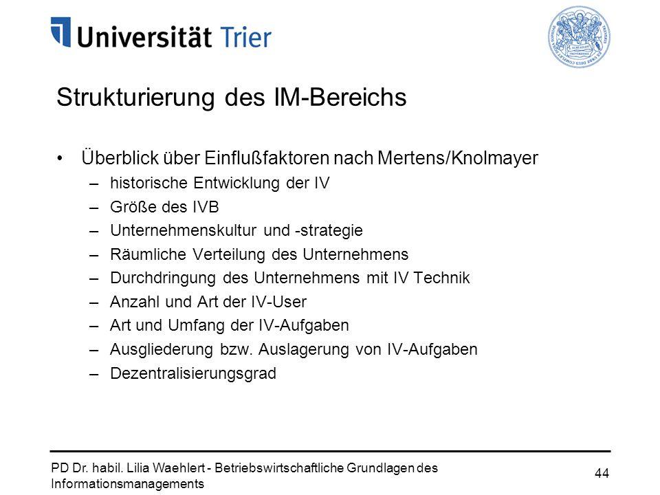 PD Dr. habil. Lilia Waehlert - Betriebswirtschaftliche Grundlagen des Informationsmanagements 44 Strukturierung des IM-Bereichs Überblick über Einfluß