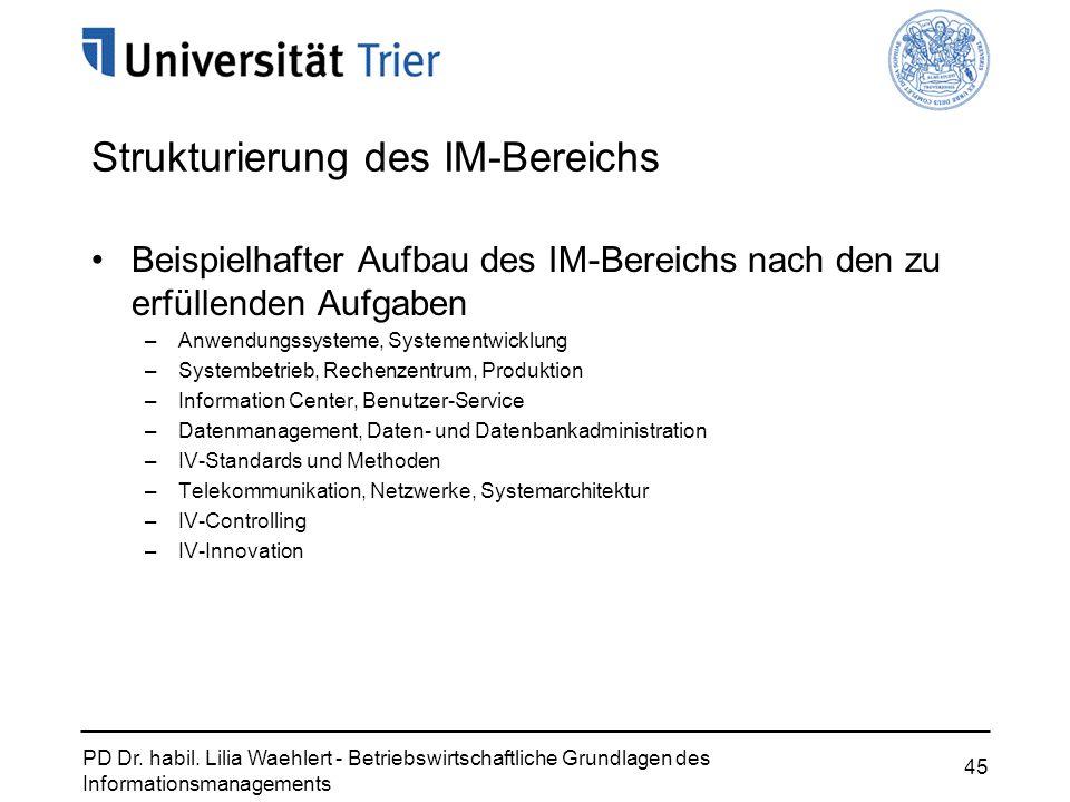 PD Dr. habil. Lilia Waehlert - Betriebswirtschaftliche Grundlagen des Informationsmanagements 45 Strukturierung des IM-Bereichs Beispielhafter Aufbau