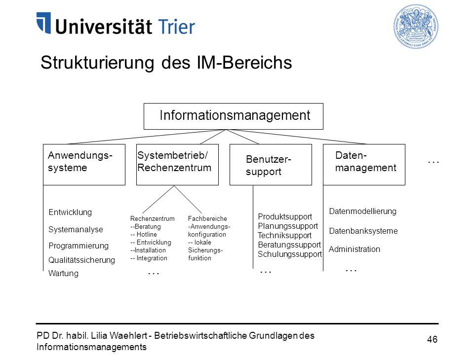 PD Dr. habil. Lilia Waehlert - Betriebswirtschaftliche Grundlagen des Informationsmanagements 46 Strukturierung des IM-Bereichs Informationsmanagement