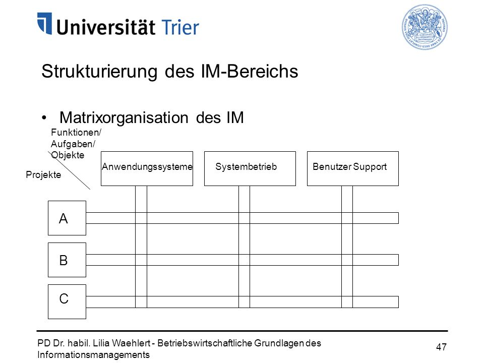 PD Dr. habil. Lilia Waehlert - Betriebswirtschaftliche Grundlagen des Informationsmanagements 47 Strukturierung des IM-Bereichs Matrixorganisation des