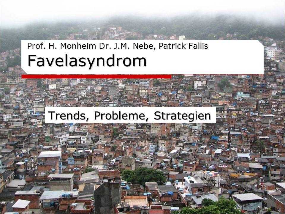 Prof. H. Monheim Dr. J.M. Nebe, Patrick Fallis Favelasyndrom Trends, Probleme, Strategien