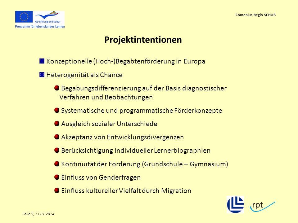 Folie 5, 11.01.2014 Comenius Regio SCHUB Projektintentionen Konzeptionelle (Hoch-)Begabtenförderung in Europa Heterogenität als Chance Begabungsdiffer
