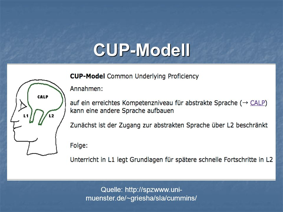 CUP-Modell
