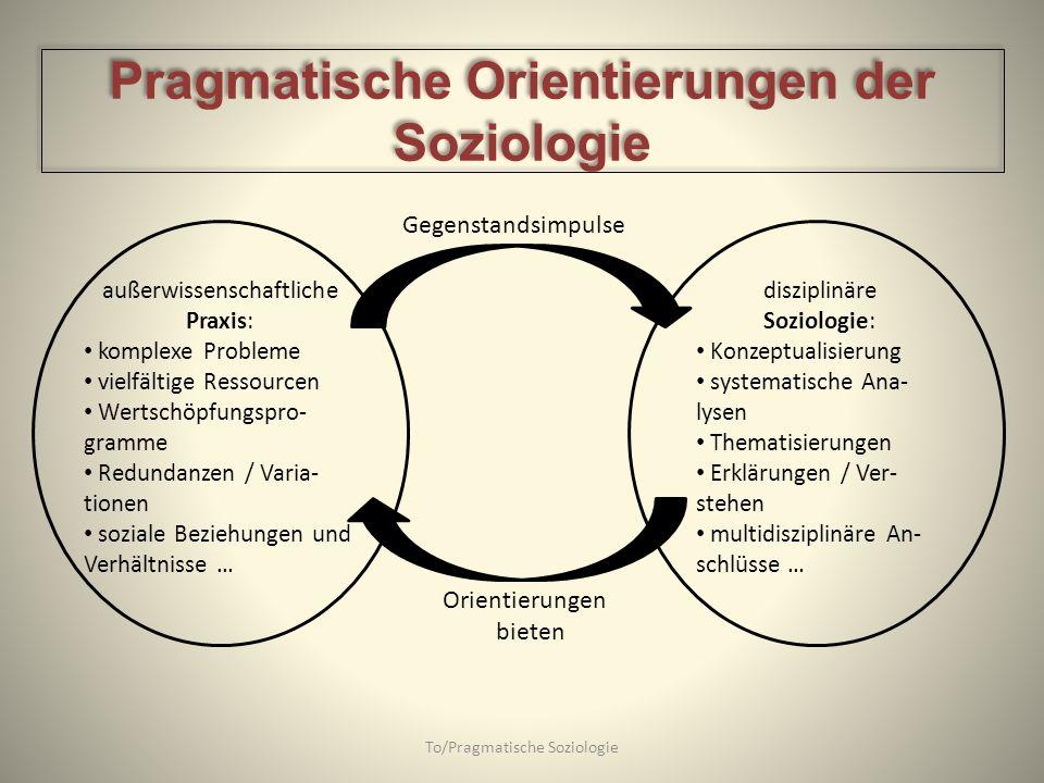 To/Pragmatische Soziologie außerwissenschaftliche Praxis: komplexe Probleme vielfältige Ressourcen Wertschöpfungspro- gramme Redundanzen / Varia- tion