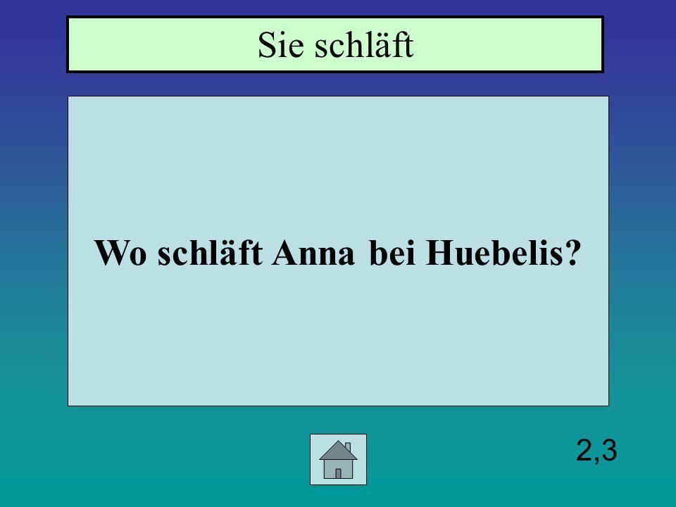 2,3 Wo schläft Anna bei Huebelis? Sie schläft