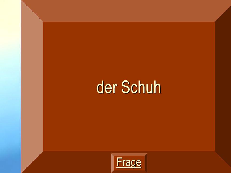 Wie sagt man socks auf Deutsch? 400