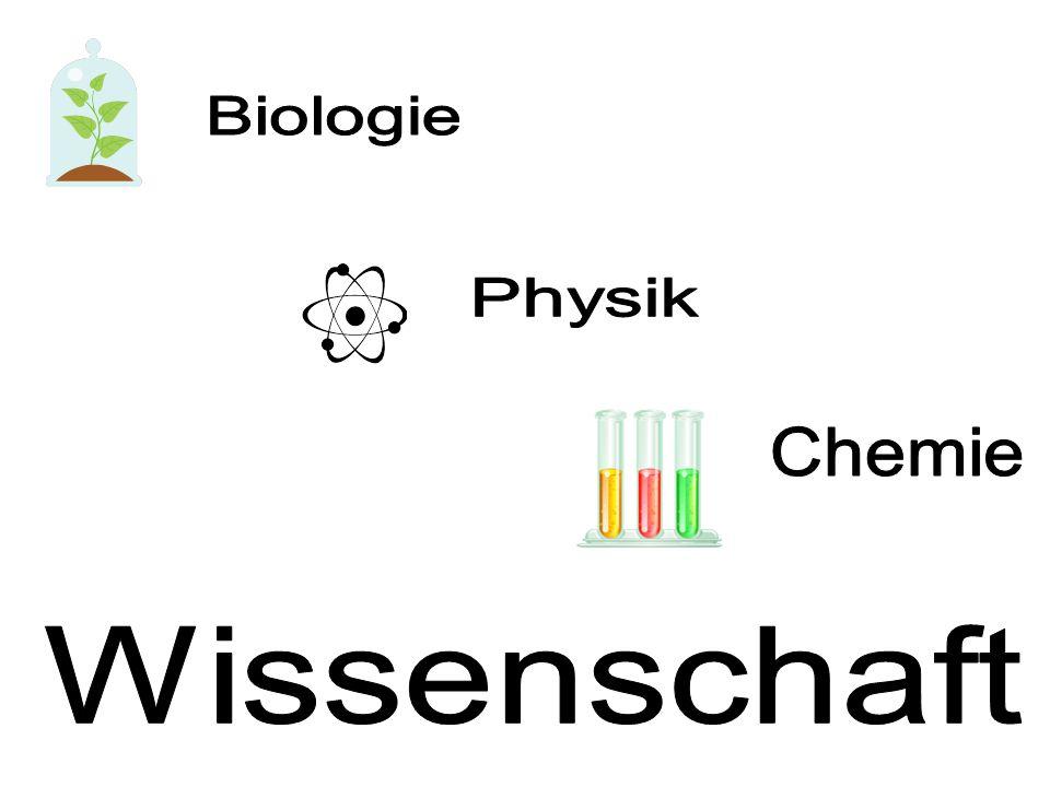 Sinn oder Unsinn.1. Ich lerne gern Deutsch, weil es prima ist.