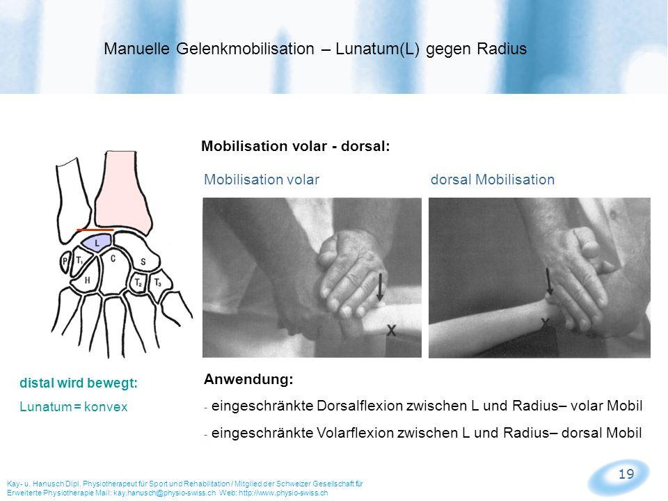 19 Mobilisation volar - dorsal: Mobilisation volar dorsal Mobilisation Manuelle Gelenkmobilisation – Lunatum(L) gegen Radius Kay- u. Hanusch Dipl. Phy